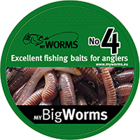 myBigWorms